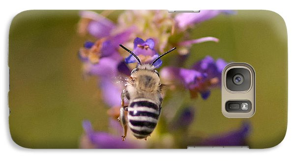 Galaxy Case featuring the photograph Worker Bee by Mitch Shindelbower