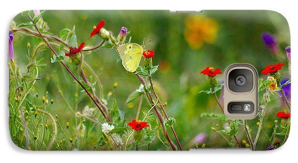 Galaxy Case featuring the photograph Yellow Butterfly In Meadow by John  Kolenberg