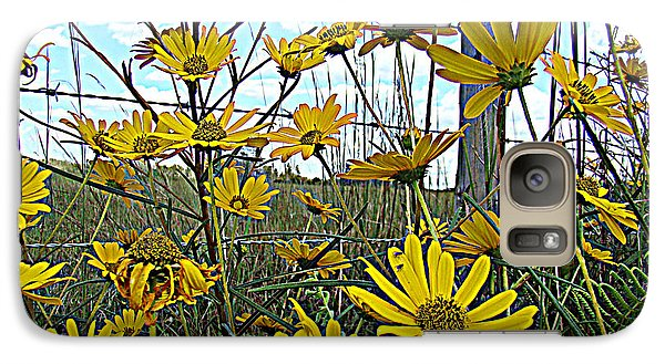 Galaxy Case featuring the photograph Yellow Flowers By The Roadside by Alice Gipson