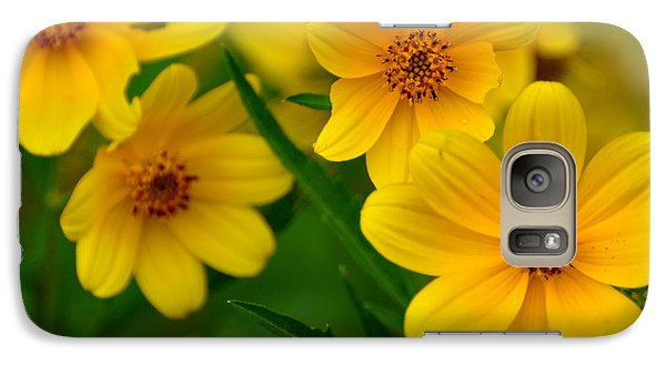 Galaxy Case featuring the photograph Yellow Flowers by Marty Koch