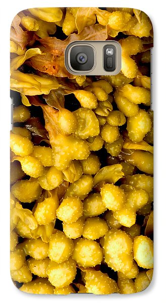 Galaxy Case featuring the photograph Yellow Kelp Pods by Brent L Ander