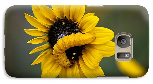 Galaxy Case featuring the photograph Yellow On Yellow by Monte Stevens
