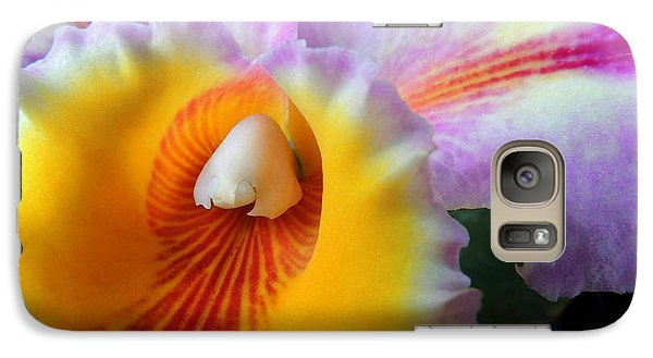 Galaxy Case featuring the photograph Yellow Purple Orchid by Kristine Merc