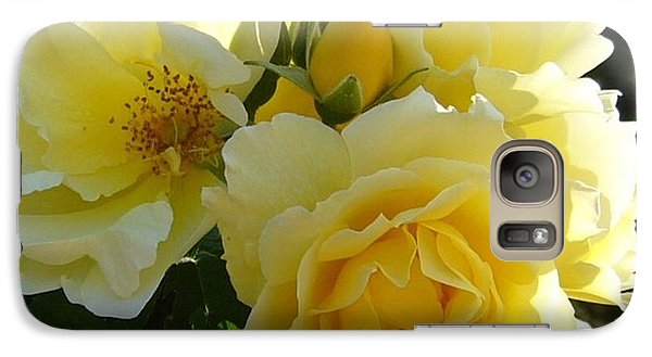 Galaxy Case featuring the photograph Yellow Rose by Jim Sauchyn