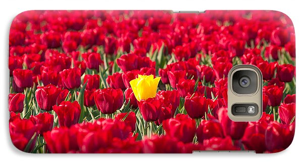 Galaxy Case featuring the photograph Yellow Tulip by Hans Engbers