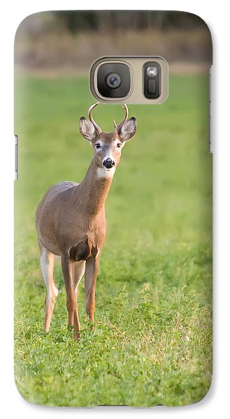 Galaxy Case featuring the photograph Young Buck by Art Whitton