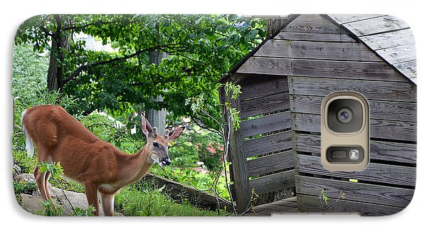 Galaxy Case featuring the photograph Young Buck At Treehouse Hopatcong by Maureen E Ritter