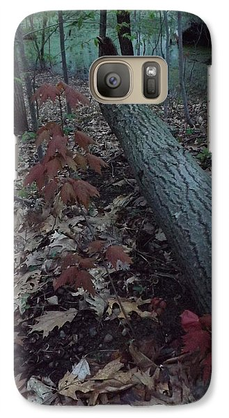 Galaxy Case featuring the photograph Young Maple At The Swamp by Gerald Strine