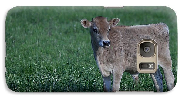 Galaxy Case featuring the photograph Young Moo by John Crothers