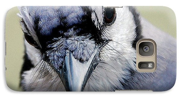 Bluejay Galaxy S7 Case -  Blue Jay by Skip Willits