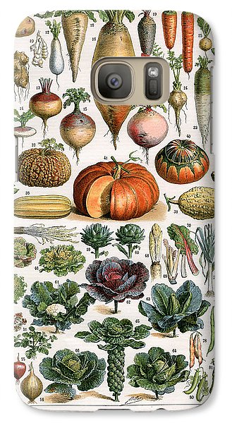 Illustration Of Vegetable Varieties Galaxy Case by Alillot