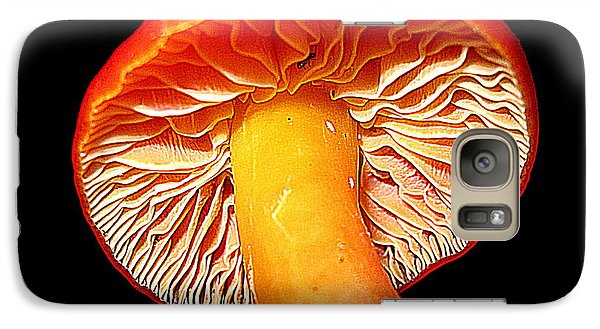 Galaxy Case featuring the photograph  In Mushroom by John King