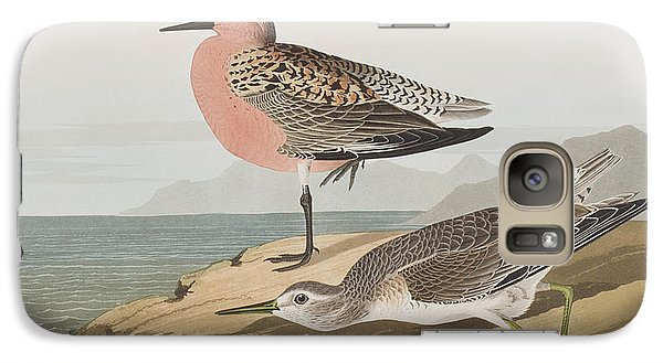 Red-breasted Sandpiper  Galaxy S7 Case