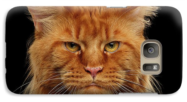 Cat Galaxy S7 Case - Angry Ginger Maine Coon Cat Gazing On Black Background by Sergey Taran