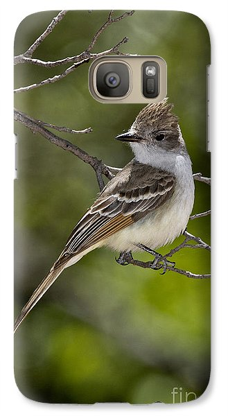Ash-throated Flycatcher Galaxy Case by Anthony Mercieca