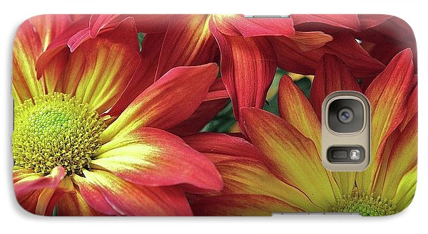 Galaxy Case featuring the photograph Beautiful Trio by Allen Beatty