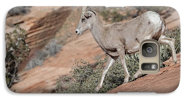 Galaxy Case featuring the photograph Big Horn Sheep by Tyson and Kathy Smith