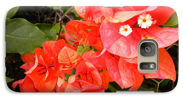 Galaxy Case featuring the painting Bouganvilla 1 by Renate Nadi Wesley
