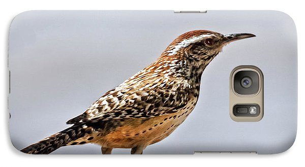 Galaxy Case featuring the photograph Cactus Wren by Robert Bales