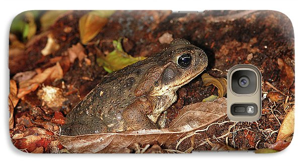 Galaxy Case featuring the photograph Cane Toad by Breck Bartholomew