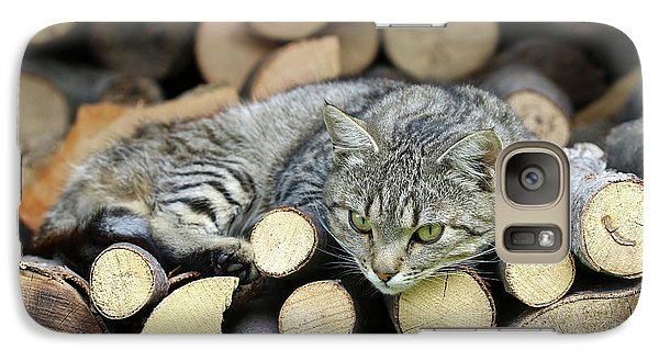 Galaxy Case featuring the photograph Cat Resting On A Heap Of Logs by Michal Boubin