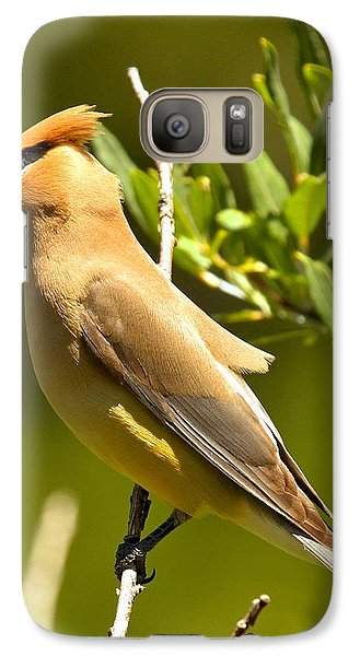 Cedar Waxwing Closeup Galaxy Case by Adam Jewell