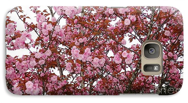 Galaxy Case featuring the photograph Cherry Blossoms  by Victor K