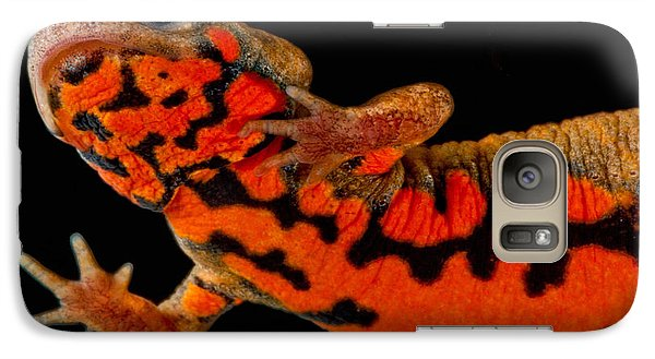 Chuxiong Fire Belly Newt Galaxy S7 Case by Dant� Fenolio