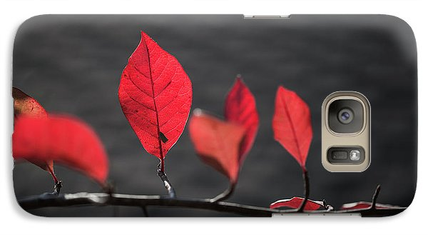 Galaxy Case featuring the photograph Colorful Tree Leaves Changing Color For Auyumn,fall Season In Oc by Jingjits Photography