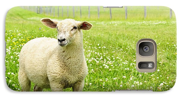 Cute Young Sheep Galaxy S7 Case