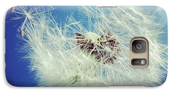 Dandelion And Blue Sky Galaxy Case by Matthias Hauser