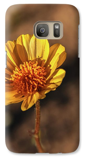 Galaxy Case featuring the photograph Desert Sunflower by Robert Bales