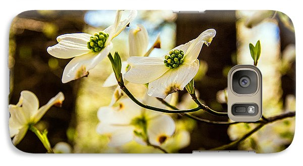 Galaxy Case featuring the photograph Dogwood Day Afternoon by John Harding