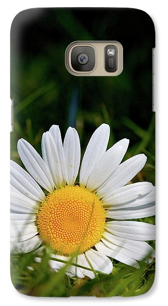 Galaxy Case featuring the photograph Fallen Daisy by Scott Holmes