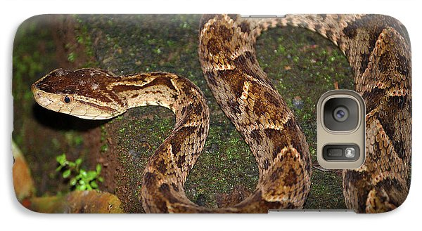 Galaxy Case featuring the photograph Fer-de-lance, Bothrops Asper by Breck Bartholomew