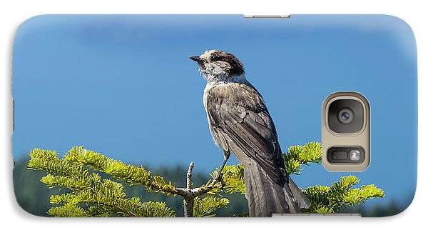 Galaxy Case featuring the photograph Gray Jay by Kathy King