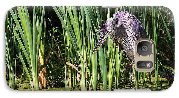 Galaxy Case featuring the photograph Great Blue Heron Itch by Edward Peterson