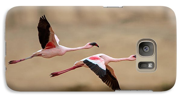 Greater Flamingos Phoenicopterus Roseus Galaxy S7 Case by Panoramic Images