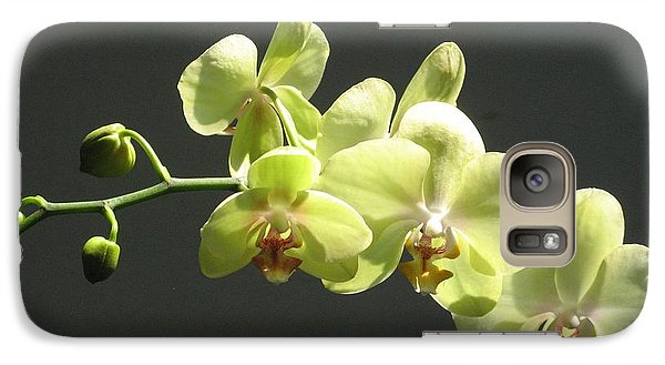 Galaxy Case featuring the photograph Green Orchid by Alfred Ng