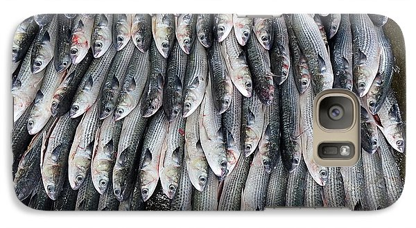 Galaxy Case featuring the photograph Grey Mullet Fish For Sale At The Fish Market by Yali Shi