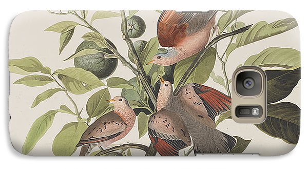 Ground Dove Galaxy S7 Case by John James Audubon
