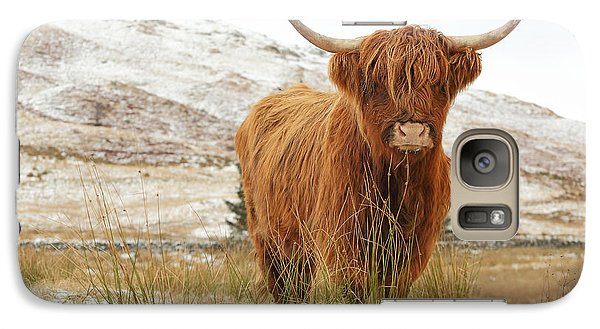Cow Galaxy S7 Case - Highland Cow by Grant Glendinning