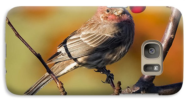 House Finch Galaxy S7 Case by Ricky L Jones