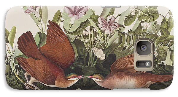 Key West Dove Galaxy Case by John James Audubon