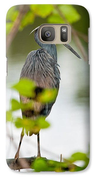 Galaxy Case featuring the photograph Little Blue Heron by Christopher Holmes