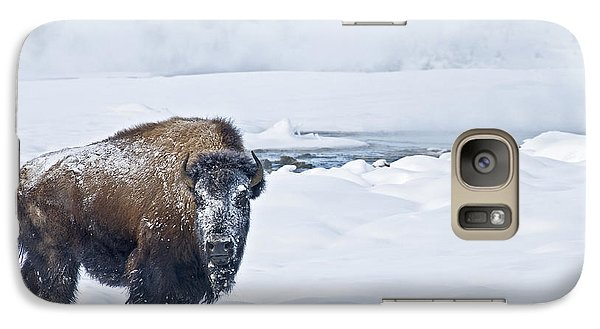Lone Bison Galaxy S7 Case by Gary Lengyel