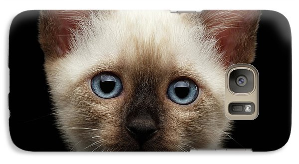 Cat Galaxy S7 Case - Mekong Bobtail Kitty With Blue Eyes On Isolated Black Background by Sergey Taran