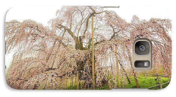 Miharu Takizakura Weeping Cherry02 Galaxy S7 Case by Tatsuya Atarashi