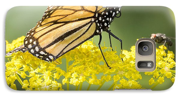 Monarch Butterfly Galaxy S7 Case by Ricky L Jones
