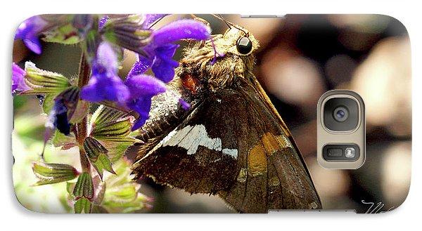 Galaxy Case featuring the photograph Moth On Purple Flower by Meta Gatschenberger